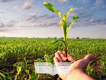 Curso para Curso Preparatório para Certificação Agrícola